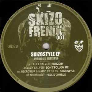 Various - Skizostyle EP mp3